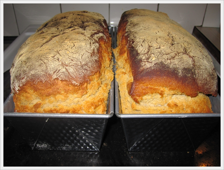 bröd på rågsikt